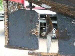 Corrosion at rudderblade and hull